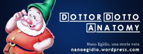 Dottor Dotto Anatomy